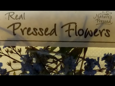 Witchy Product Review: Natures Pressed